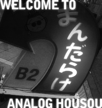Welcome To Analog Housou